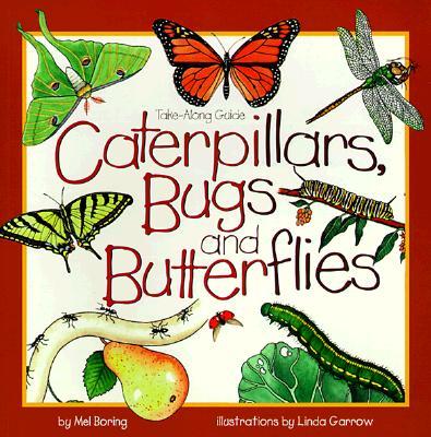 Caterpillars, Bugs and Butterflies By Boring, Mel
